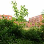 Kurt-Engert-Haus im Grünen